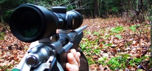 Amerika Gevik AVı-Deer Hunting