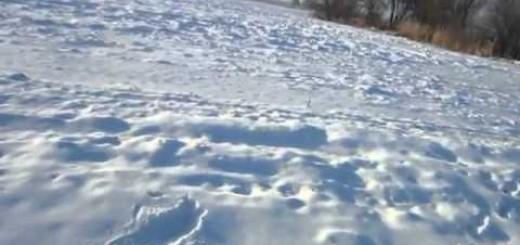 Kışın Ördek Avı(Winter Duck Hunting)