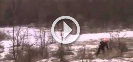 super-wild-boar-hunting-her-att-n-ndiriyor-720x340