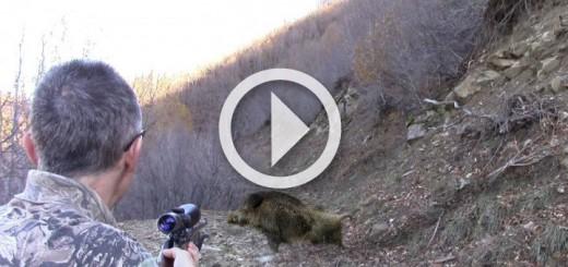 wild-boar-hunting-720x340