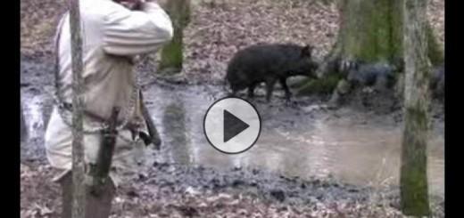 ultimate-hog-hunting-domuz-av-zle-720x340