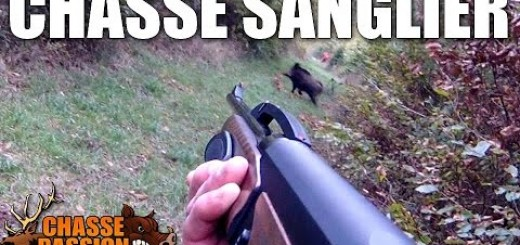 Swine shoots from a very close distance .