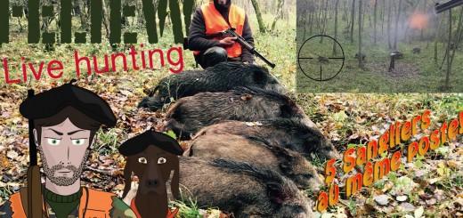 Chasse au sanglier en battue, jabali, wild boar    Galtjakt  Villisikametsällä