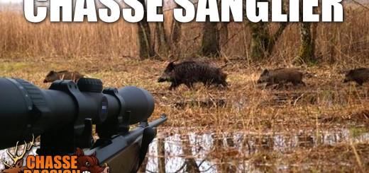 Chasse sanglier  vildsvinsjakt  Wildschweinjagd  caccia al cinghiale