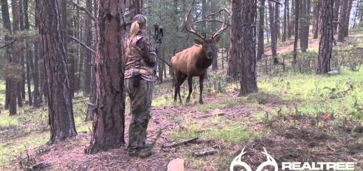 deer hunting (hirvieläinten metsästys) hjorte jagt