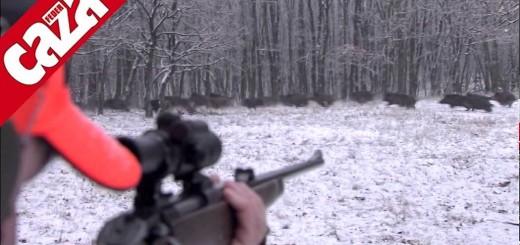 snow boar hunt caza del jabalí nieve  lumi villisikametsällä