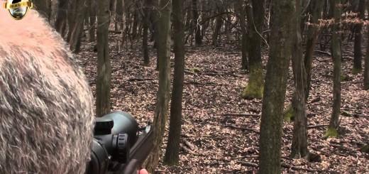 Wild Boar Hunt in Hungary  vildsvinsjakt