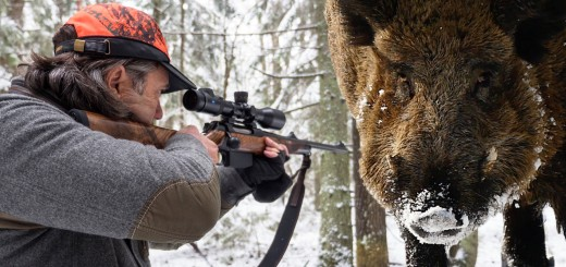 Wild Boar hunting best moments compilation Polowanie najlepsze momenty Drückjagd Wildschweinjagd Chasse Au Sanglier drivjakt
