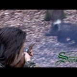 Wild Boar Hunting Perfect Shoot